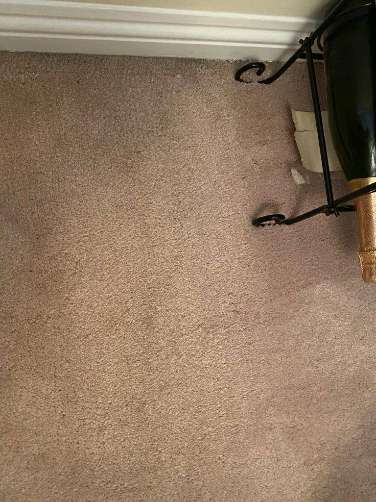 service exterior carpet cleaning comparison 4b